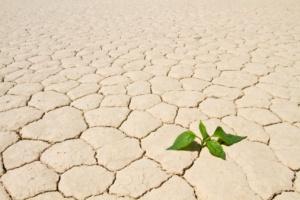 cambiamento_climatico-passi-avanti-italia