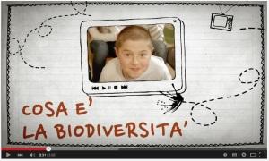 puntata 1 - bio