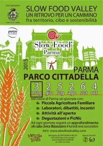 SFV2015_LocandinaMaggioA51