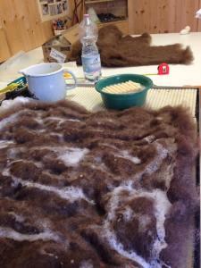 Le mani nella lana (6)