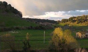 Tuscania (1)