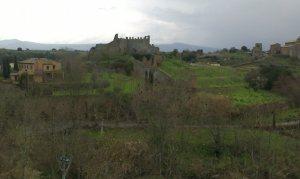 Tuscania (2)