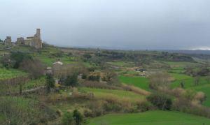 Tuscania (3)