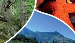 biodiversita-cancun