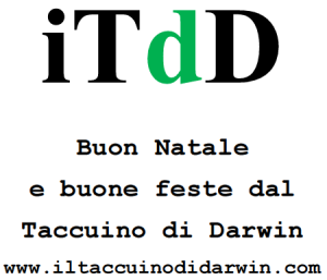 itdd-natale