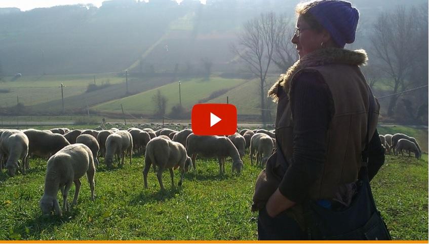 """""""In questo mondo"""". Il documentario di Anna Kauber vince il premio """"Italiana doc"""" al Torino Film Festival"""