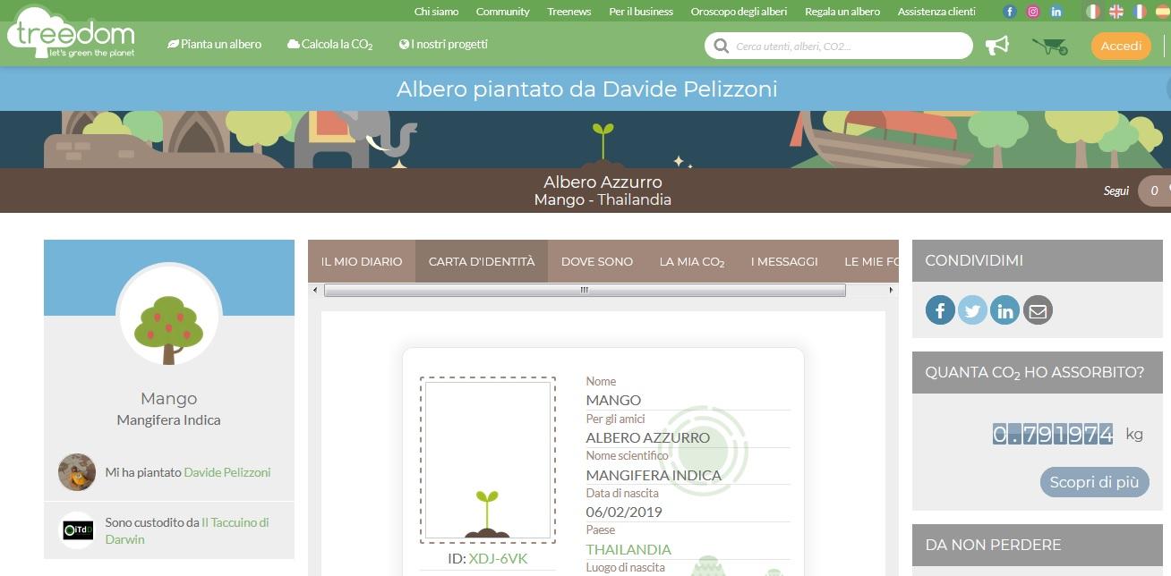 Cresce la foresta del Taccuino con un nuovo esemplare di Mango Mangifera Indica