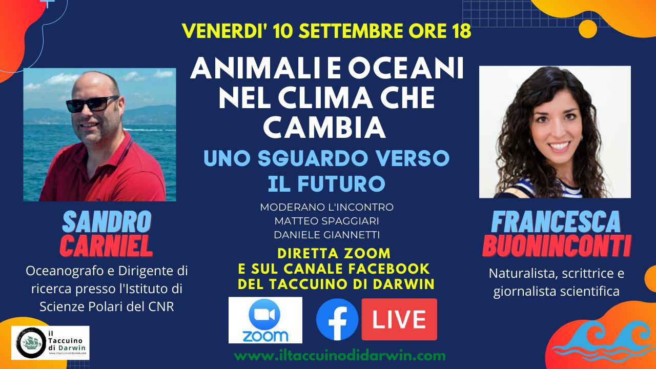 """Istruzioni per partecipare all'incontro online """"Animali e Oceani nel clima che cambia. Uno sguardo verso il futuro"""""""